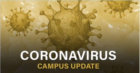 Covid Coronavirus image